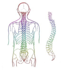 Ability Rehabilitation Degenerative Disc Disease