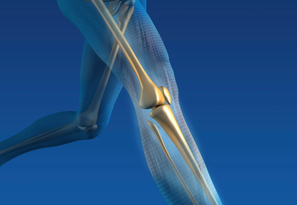 Ability Rehabilitation knee